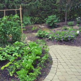Travaux d'horticulture : jardin potager.